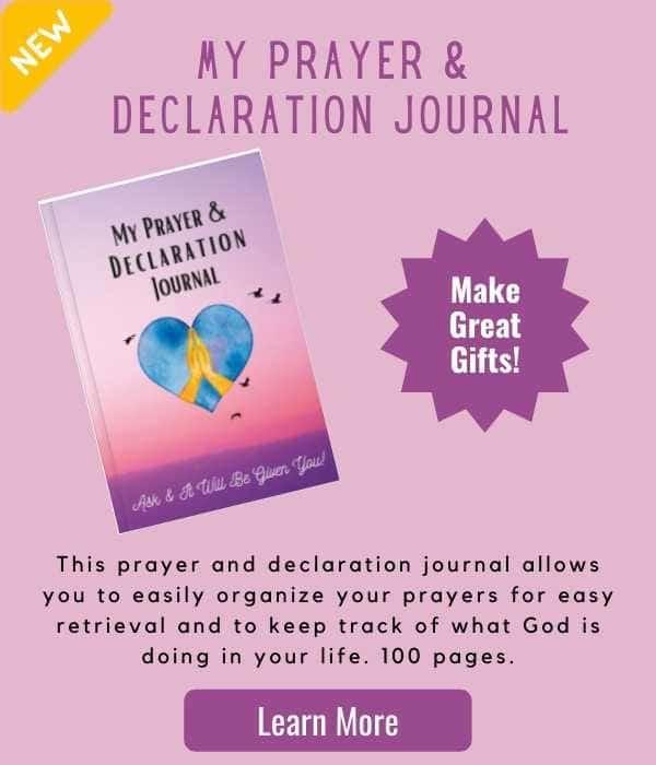 prayer and declaration journal